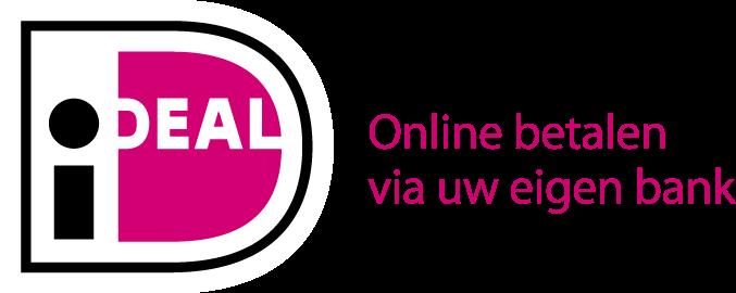 tenzie-veilig-online-betalen