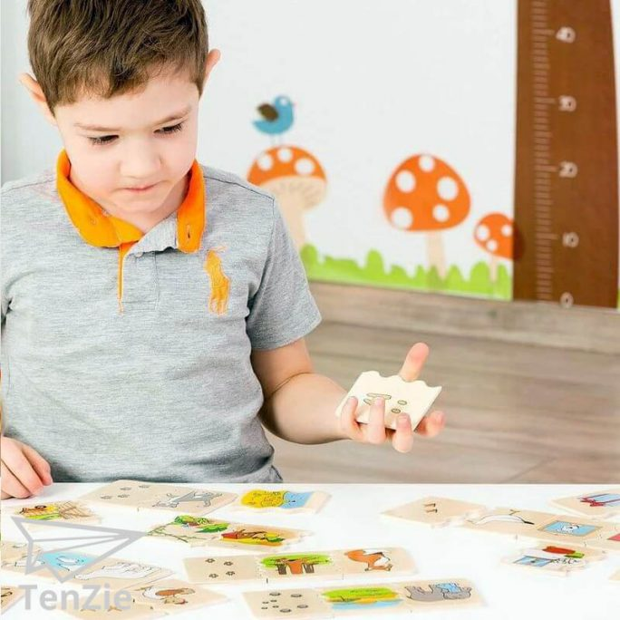 cognito-shapes-puzzel-spelmateriaal-zien-tenzie-winkel-02